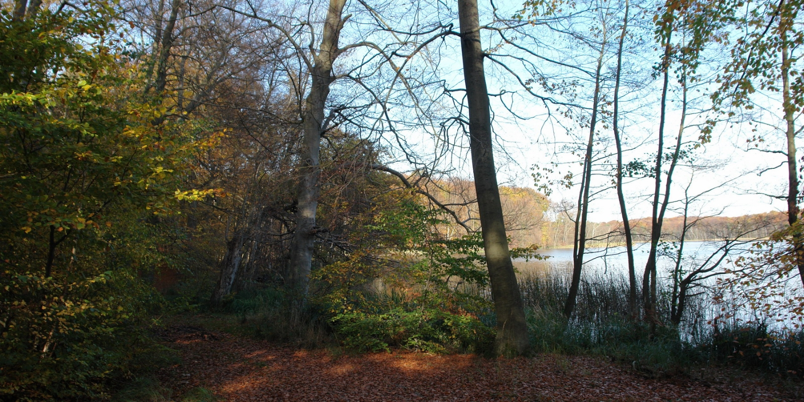 Jakobsdorfer See