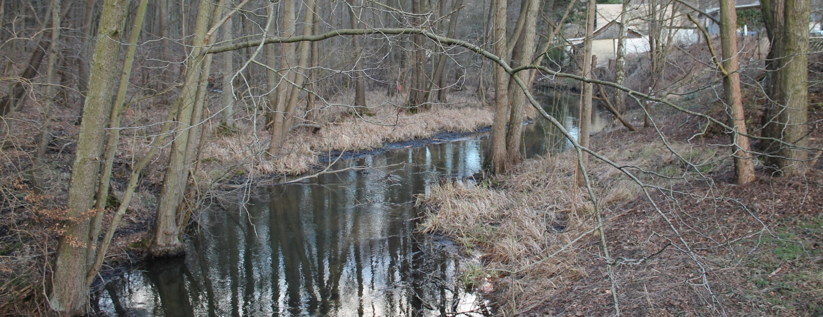 Ragöser Fließ in Neuehütte