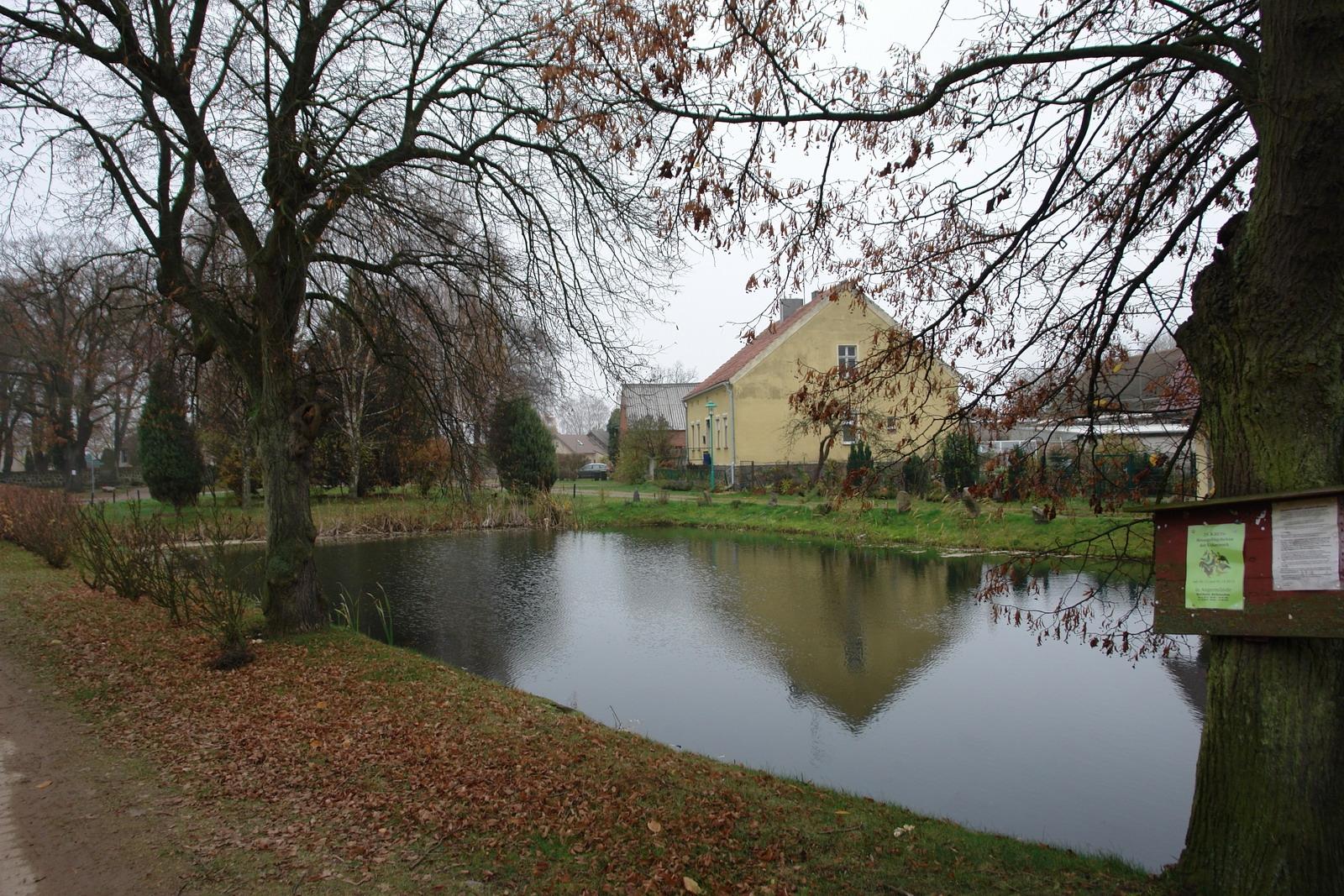 Alter Löschteich in Schmargendorf
